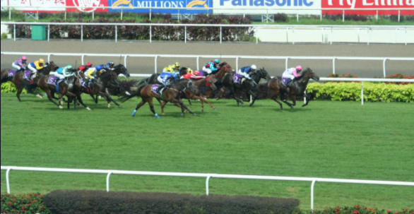 Singapore Horse Racing Live Site